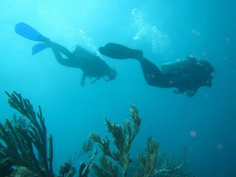 Scuba diving Providencia