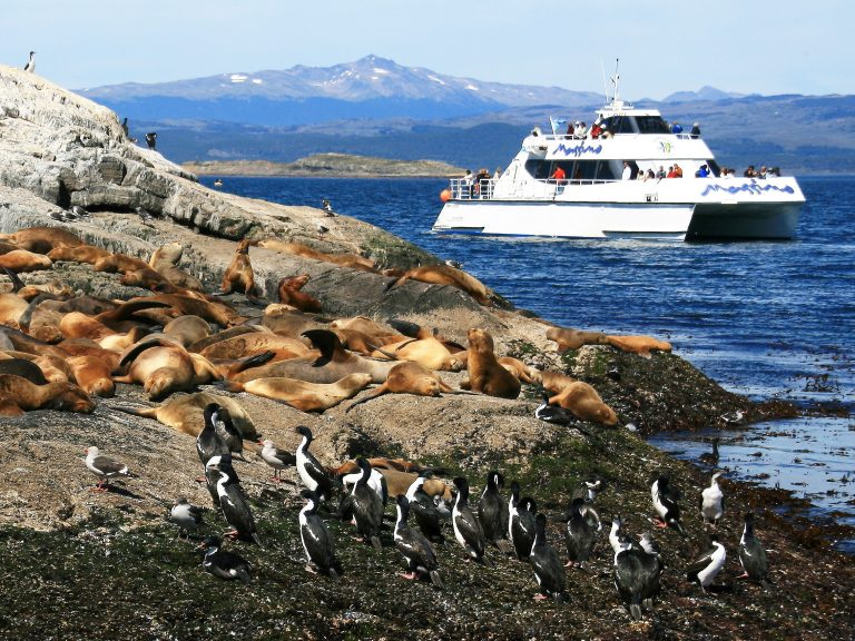 Beagle Channel cruise in Patagonia
