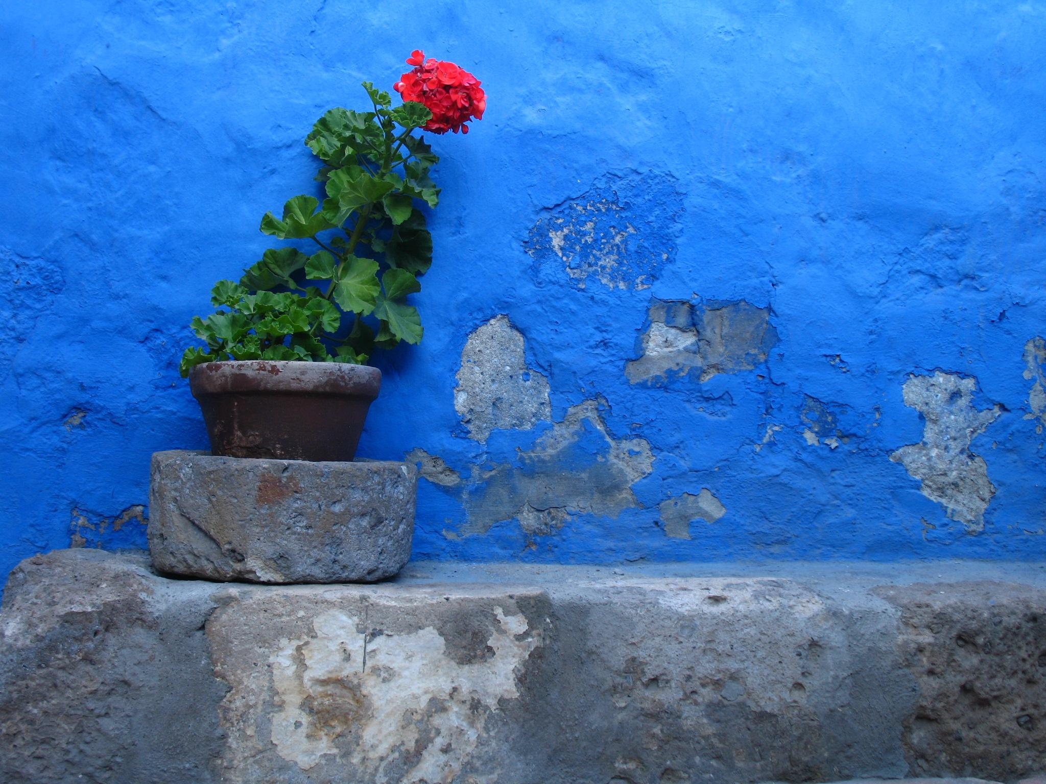 Colours of Arequipa