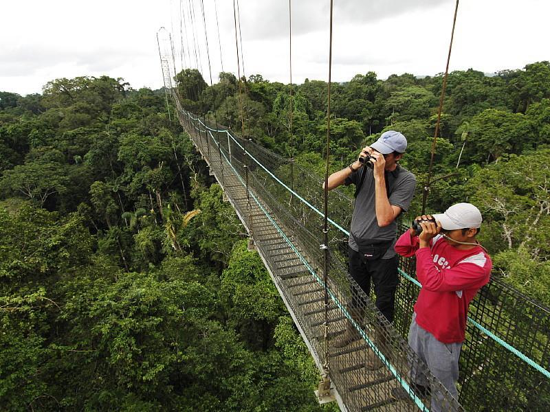 Amazon safari, Ecuador mainland adventures