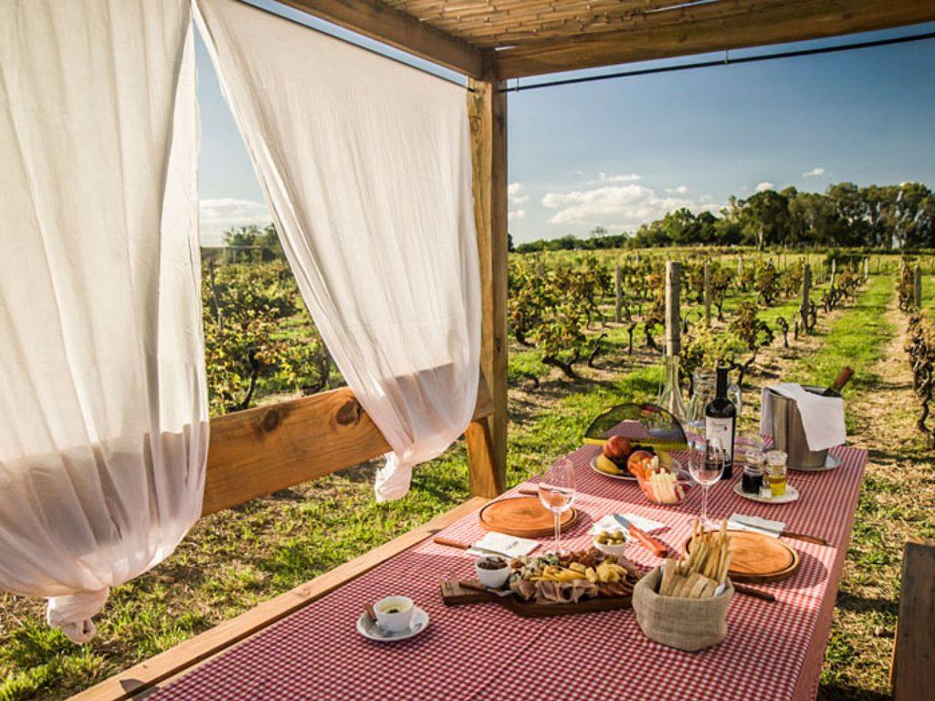 Posada Campotinto - Wine tasting in Uruguay