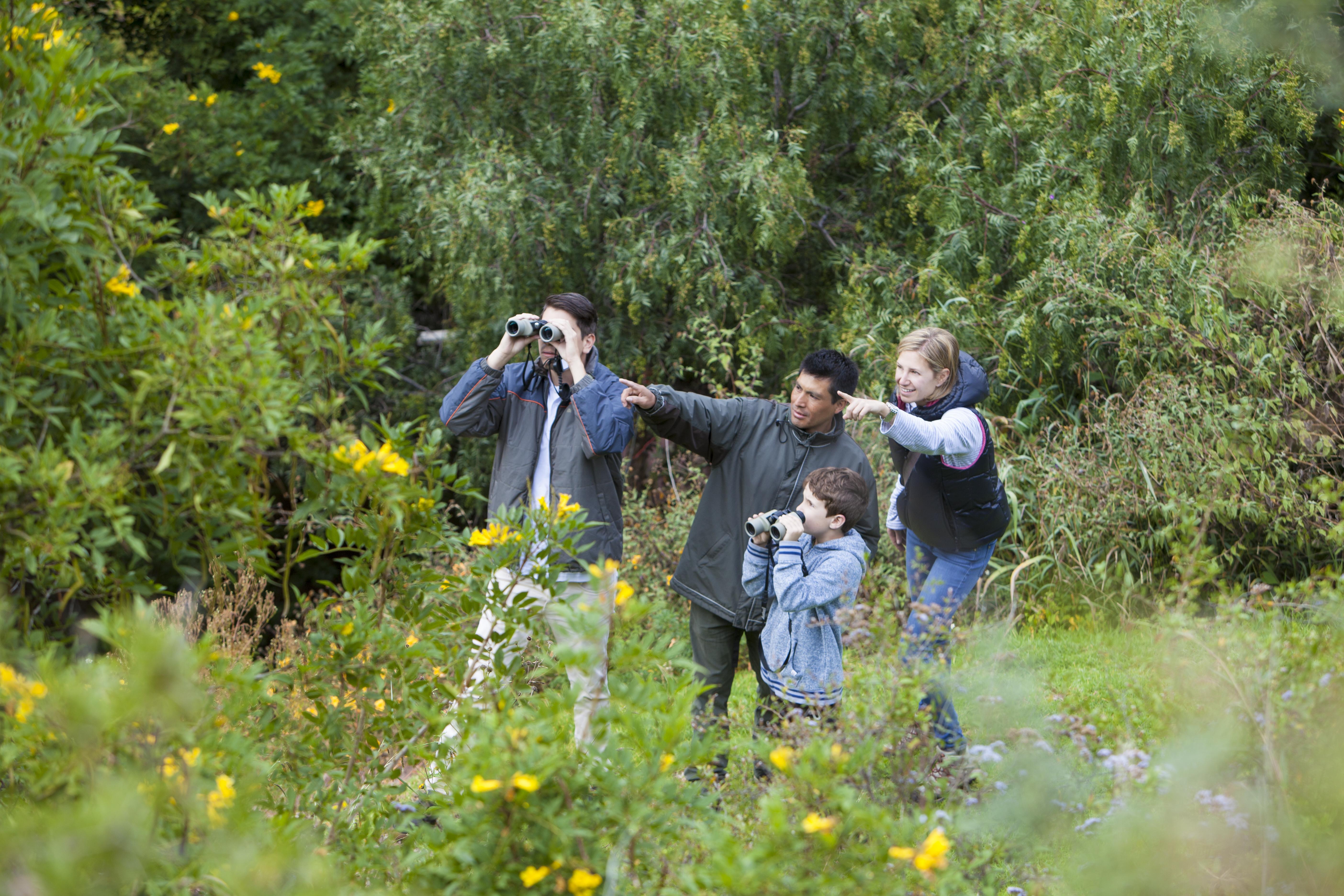 Birdwatching at Inkaterra Hacienda Urubamba | Sacred Valley with Kids