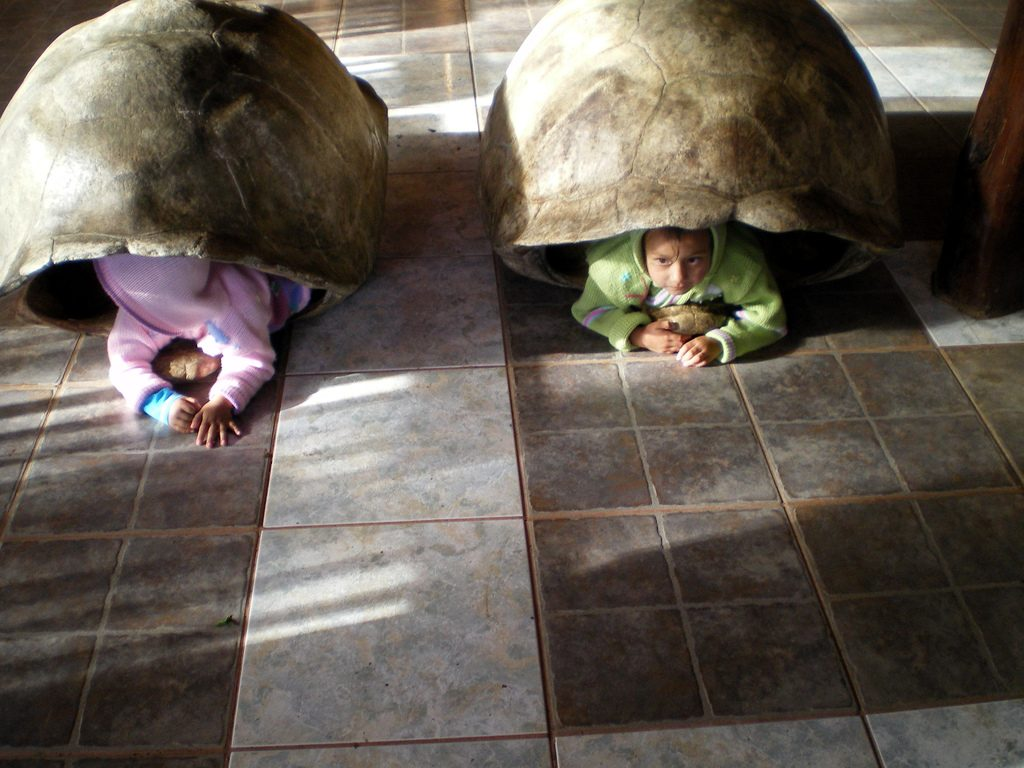 Galapagos with kids | Discover Your South America Blog