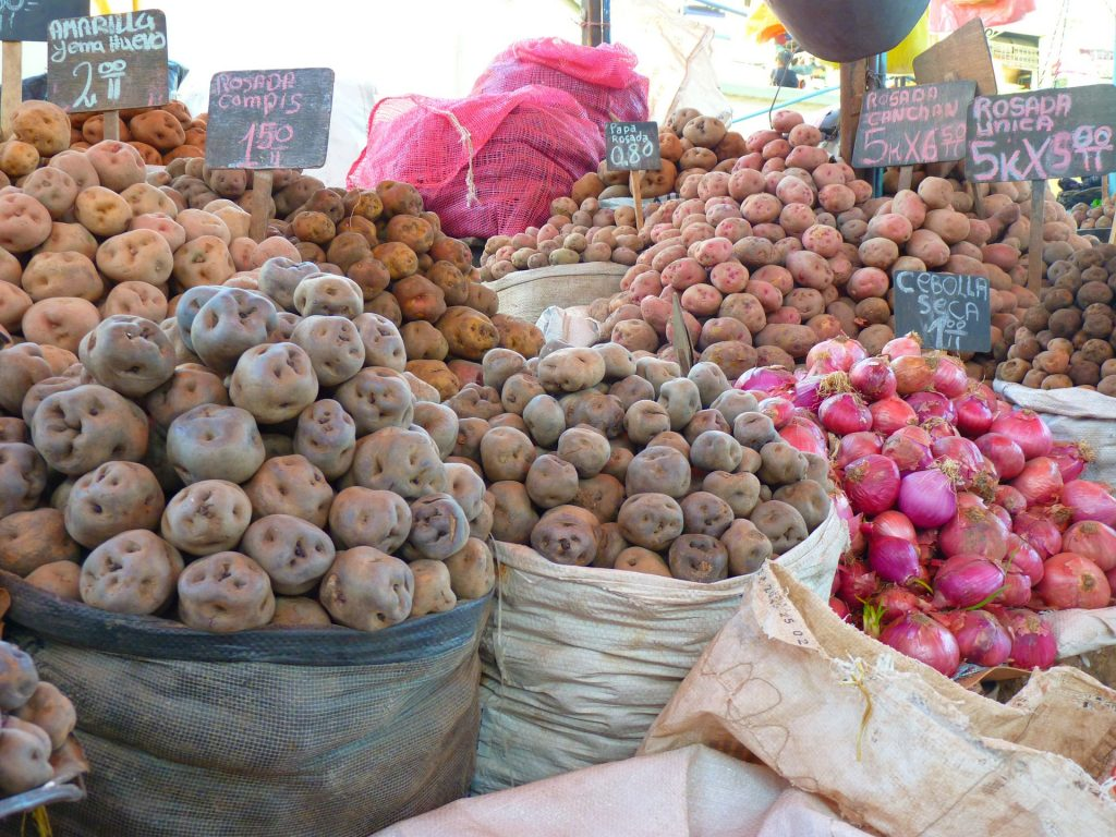 Peruvian potatoes   Discover Your South America Blog