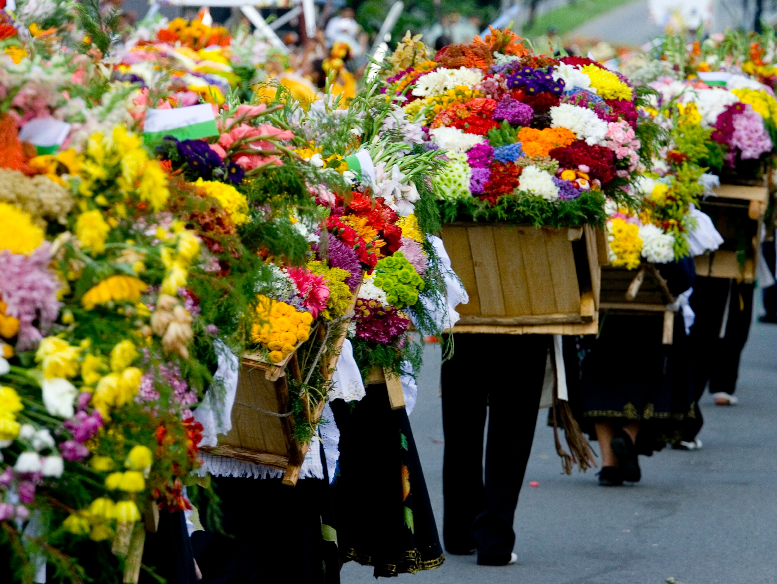 Medellín's Flower Festival | Discover Your South America Blog