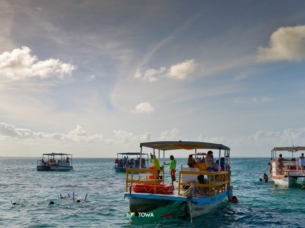Snorkelling in the Valdes Peninsula | Discover Your South America Blog